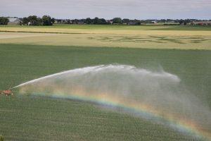 Irrigatie / beregening
