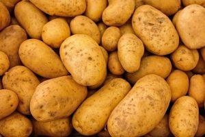 Piepr brengt 'duurzame' aardappel terug in harten en hoofden van Nederlanders
