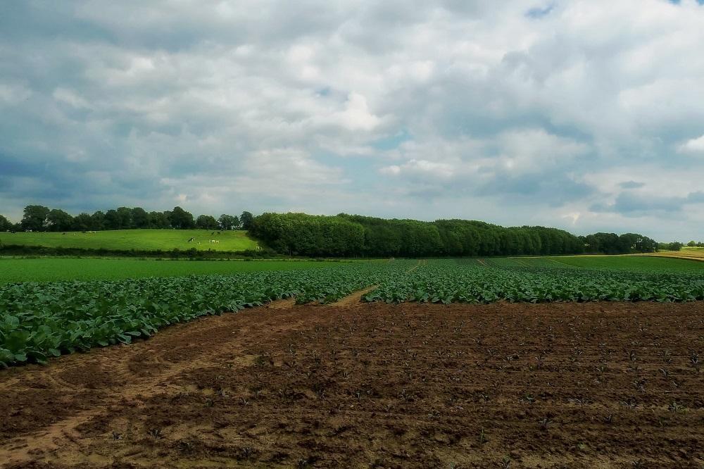 Agrarische