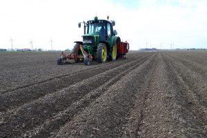 Najaarsploeg versus voorjaarsploeg: Groenbemester wint