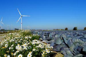 Opgaven landbouw, voedsel en natuur onderling nauw verbonden