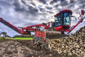 Dunne stand en horizontale bieten vergen extra aandacht bij de oogst
