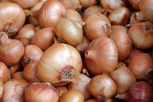 Uitdagende tijden voor agrarische sector, grote verschillen per product