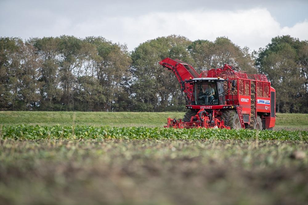 Volop oogstwerk bij suikerbieten