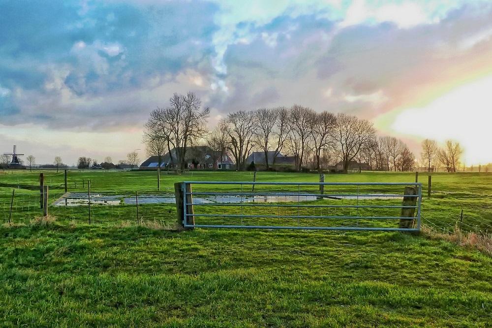 Kringlooplandbouw: efficiëntie of sufficiëntie?