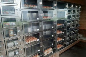 LLTB: Tips tegen inbraak en vernielingen van verkoopautomaten