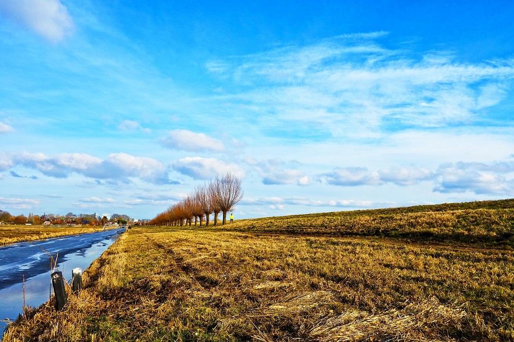 Verbod op glyfosaat voorlopig afgekeurd in Noord-Holland