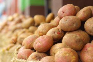 Voorraadinventarisatie aardappelen april 2021