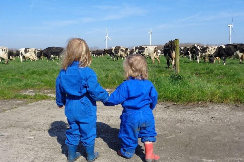 Bedrijfsopvolgingsregeling: wat zijn de gevolgen voor het boerenbedrijf?