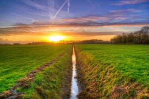 Verkenning Landbouwakkoord: sterke basis, verdieping nodig