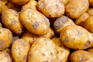 Aardappelprijs is licht hersteld voor telers
