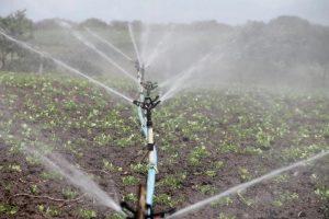 Akkerbouwers minder weersafhankelijk door klimaatverandering