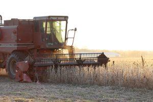Grondstoffenmarkt: Graanmarkt flauw, sojaprijs aan de lage kant