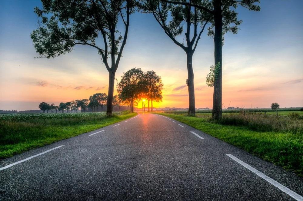 Nederlanders waarderen het om in het agrarisch landschap te wonen en 85 procent van de Nederlanders wil het agrarisch landschap behouden. Tegelijkertijd onderschatten Nederlanders flink hoeveel van het landschap in Nederland wordt beheerd door boeren en tuinders. Dat blijkt uit onderzoek van DirectResearch onder 1.038 Nederlanders in opdracht van LTO Nederland.