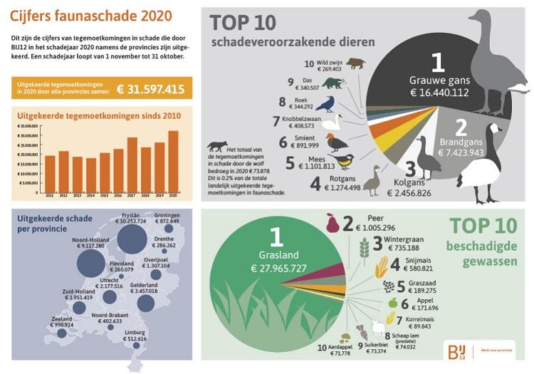 In 2020 voor 31,6 miljoen euro aan faunaschade uitgekeerd door provincies